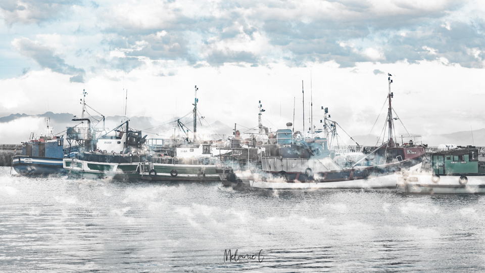 Boats on the Harbour Camera Art