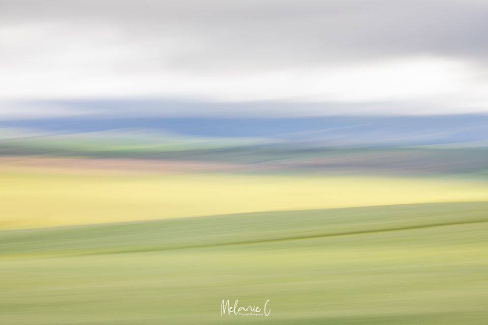 Moving Canola Fields