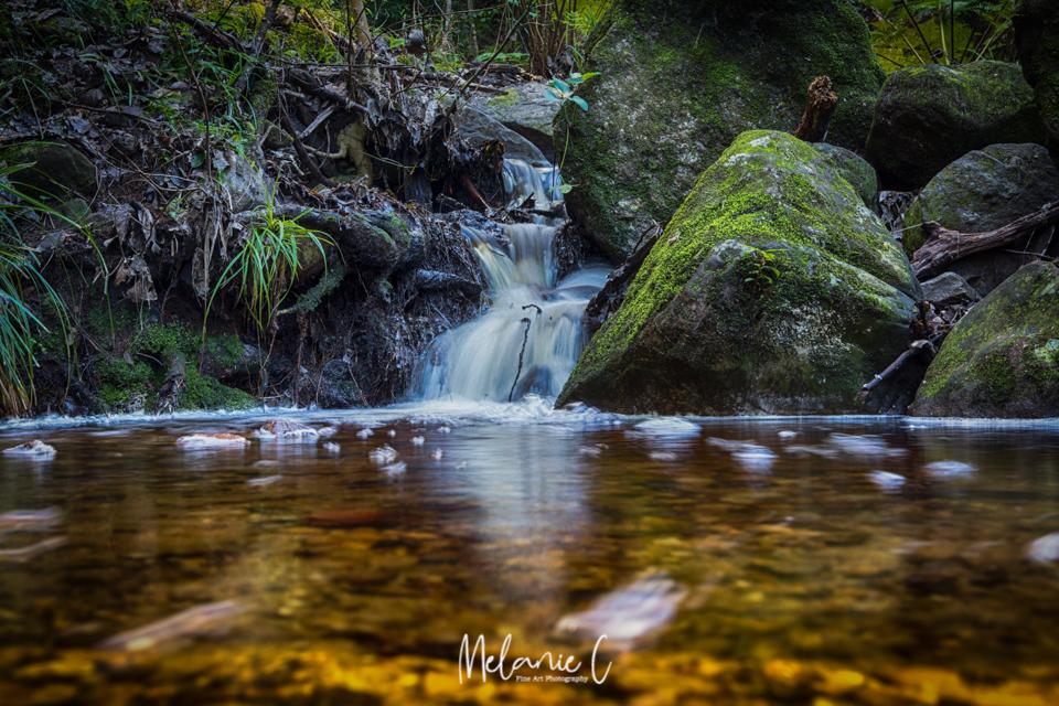 Newlands waterfall