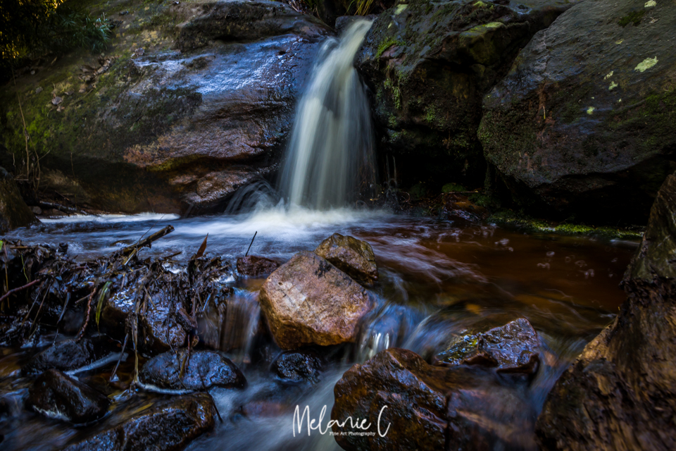 Newland forest waterfall